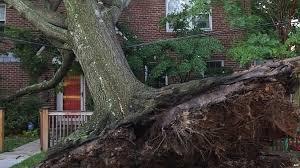 Washington D.C. Plummeted By Violent Storms